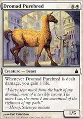 Dromad Purebred - Foil