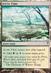 Arctic Flats - Foil