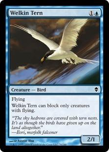 Welkin Tern - Foil