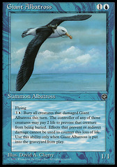 Giant Albatross (Flying Right)