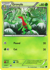 Grovyle - 7/116 - Uncommon on Channel Fireball