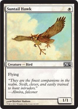 Suntail Hawk - Foil