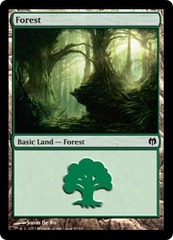 Forest (80)