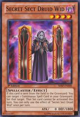 Secret Sect Druid Wid - SHSP-EN008 - Common - 1st Edition