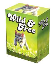 Legion Kitten Deck Box
