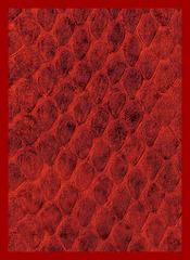 Dragon Hide Art Sleeves Red (50)