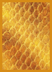 Dragon Hide Art Sleeves Gold (50)